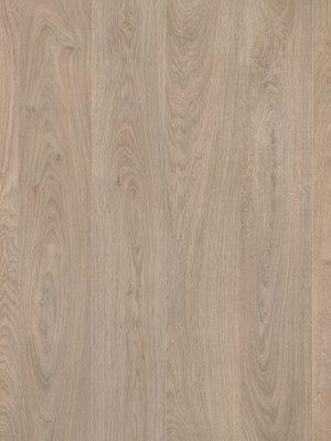Beige Sherwood Oak - Panele, Drzwi, Podłogi Szczecin