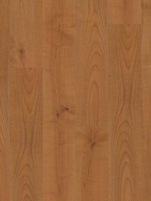 Cherry Plank - Panele, Drzwi, Podłogi Szczecin
