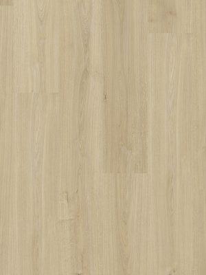 Cotton Oak Beige - Panele, Drzwi, Podłogi Szczecin