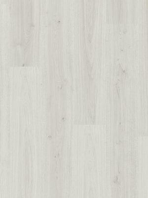 Cotton Oak White - Panele, Drzwi, Podłogi Szczecin