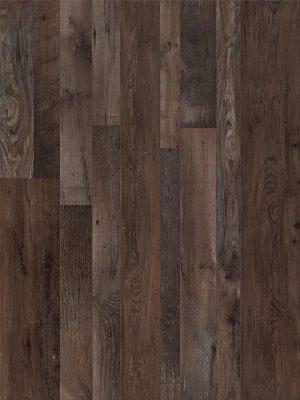 Dark Fumes Oak - Panele, Drzwi, Podłogi Szczecin