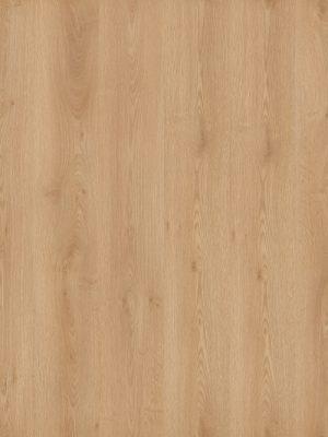 Oak Plank Middle - Panele, Drzwi, Podłogi Szczecin