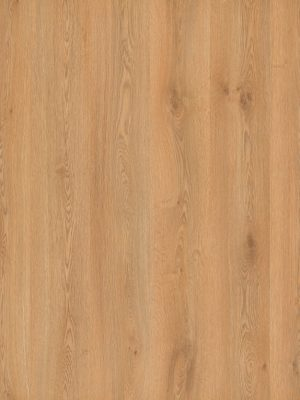 Oak Plank Natural - Panele, Drzwi, Podłogi Szczecin