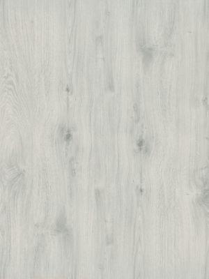 Infinite White Oak - Panele, Drzwi, Podłogi Szczecin